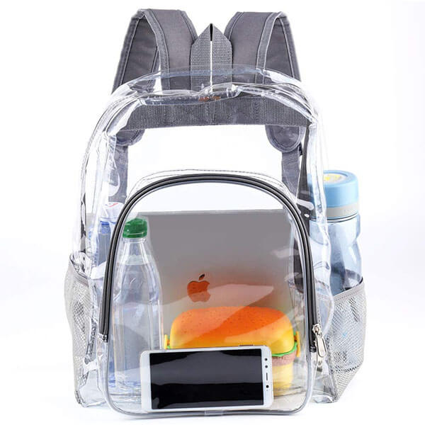 Grey Ergonomic See Through Backpack