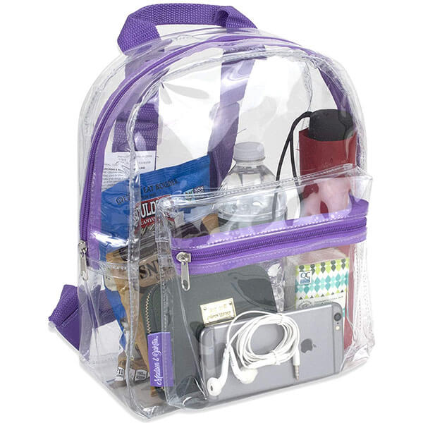 See Through Backpack for Swim Classes
