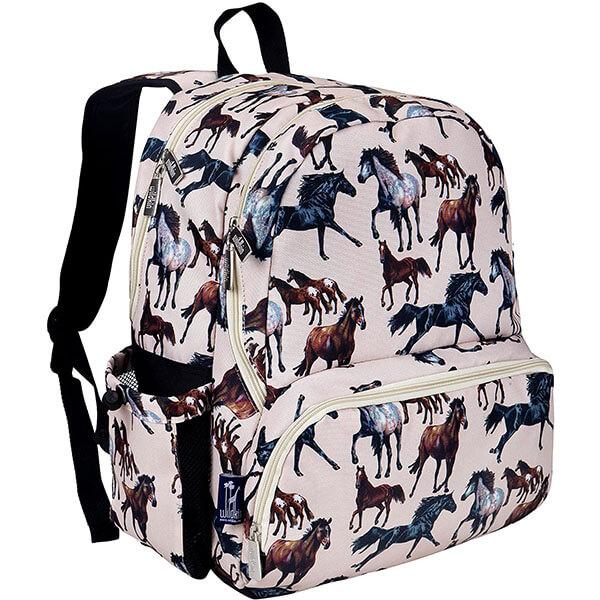 Moisture Resistant Dream Backpack