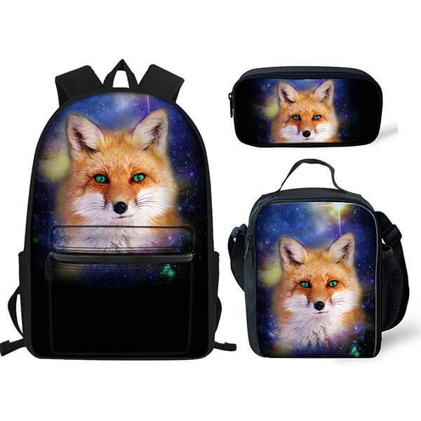Anti-Scratch Black Color Fox Backpack